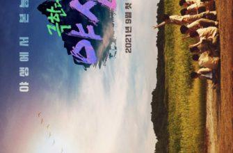 Bznq1 4f 335x220 - Экстремальный дебют: Wild Idol ✦ 2021 ✦ Корея Южная